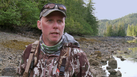 Watch Up at the Cabin: Prince of Wales Island Black Bear. Episode 16 of Season 5.