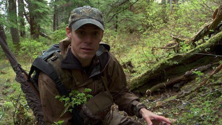 Watch Unconventional: Alaska Sooty Grouse: Part 1. Episode 13 of Season 5.