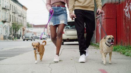 Watch Welcome Bruno. Episode 8 of Season 1.