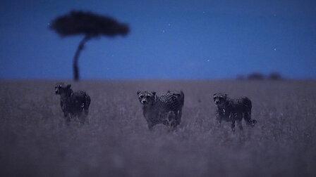 Watch Moonlit Plains. Episode 1 of Season 1.