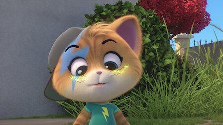 Watch Ambrogio, the Stylist Cat. Episode 25 of Season 1.